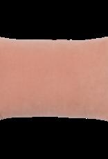 UNC Kussen - Cameo brown