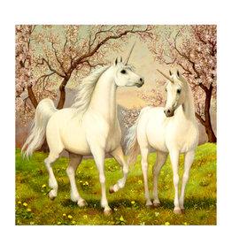 Toi-Toys - Diamond Painting 5D - Unicorns - 30x30 cm