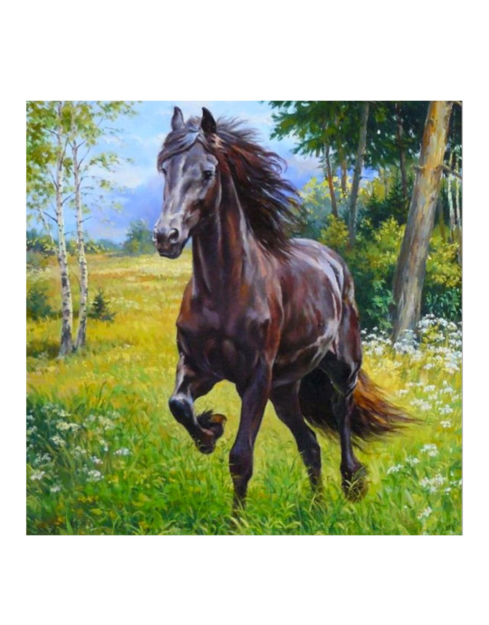 Toi-Toys - Diamond Painting 5D - Paard in het wild - 30x30 cm