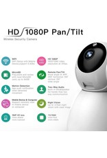 IP-camera met bewegingsdetectie - babyfoon