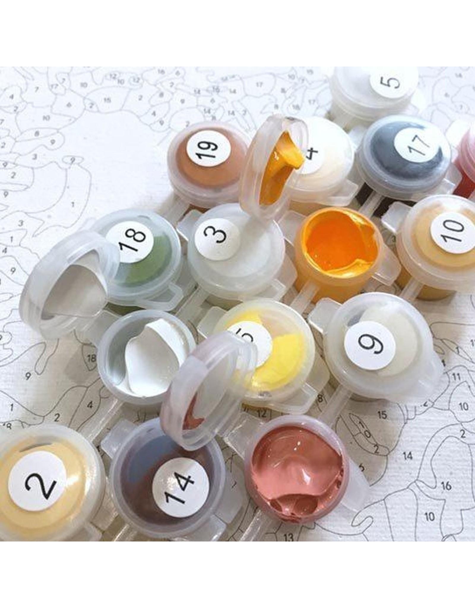 Parya Official Schilderen op nummer - Volwassenen – 4 Seizoenen - Hobby Pakket