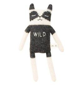 Main Sauvage Raccoon   Wild