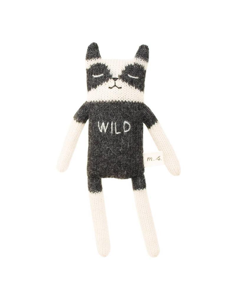 Main Sauvage Raccoon | Wild