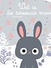 Clavis Wat is de sneeuw mooi