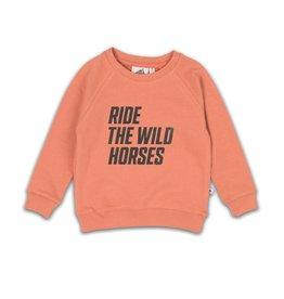 Cos I said so Sweater Cameo