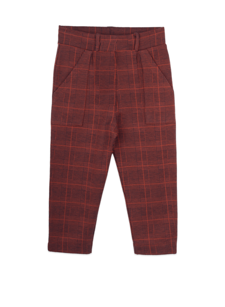 Ammehoela Bennie geruite broek | Navy Check