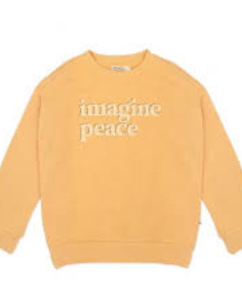Ammehoela Sweater Rocky | Nugget gold