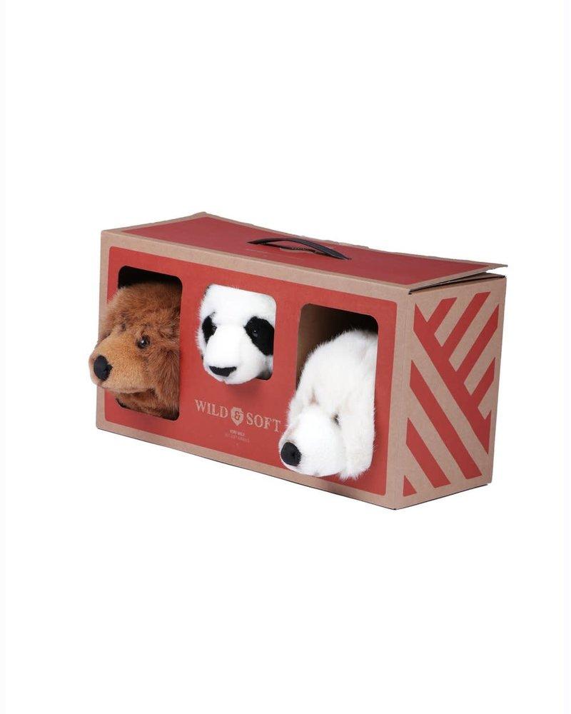 Bear box small head