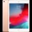 Apple iPad Mini 2019 64GB Gold