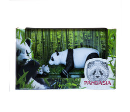 Pandasia Gift set panda with cubs