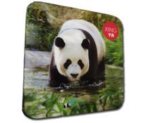 3D coaster Xing Ya