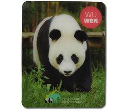 3D magnet Wu Wen
