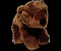 Plan L Brown bear