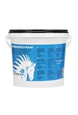 PharmaHorse Pharma Horse Magnesium 1000