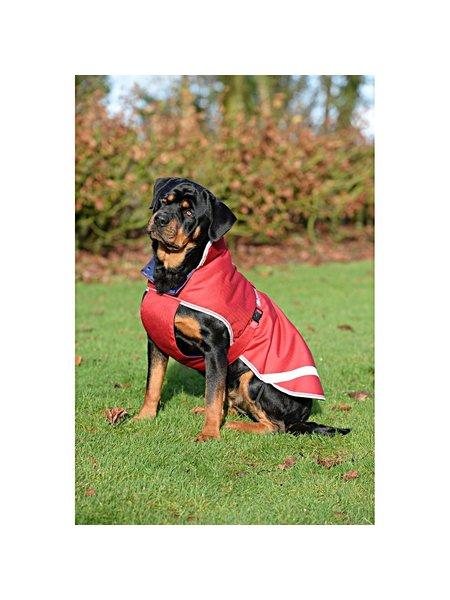 Bucas Freedom dog rug 50gr