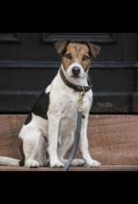 Kentucky Horsewear Kentucky Looplijn Hond 120cm Grijs