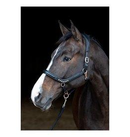 Harry's Horse Harry's Horse Halster Rosegold anatomic