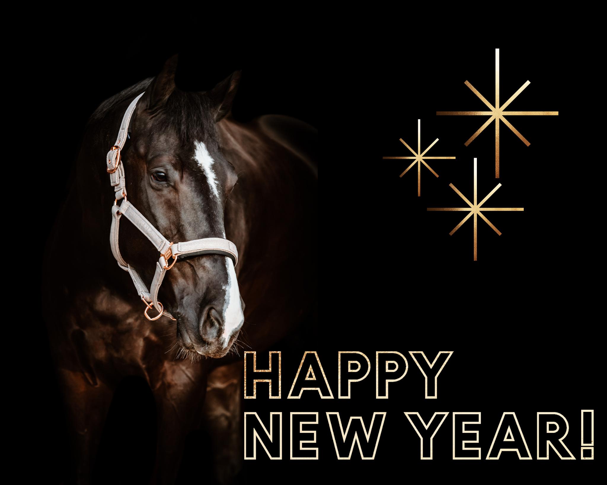 Nieuwe jaar, Nieuwe kansen, Nieuwe doelen.