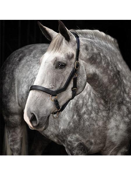 Horseware Horseware Rambo Micklem Comp Bridle