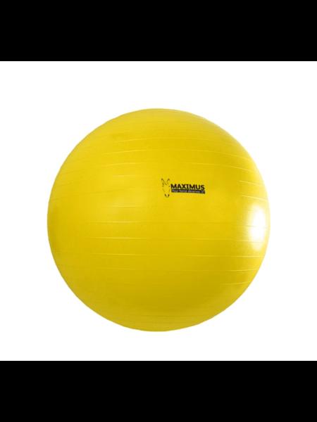 Hofman Animal Care Maximus Power Play Ball 100cm