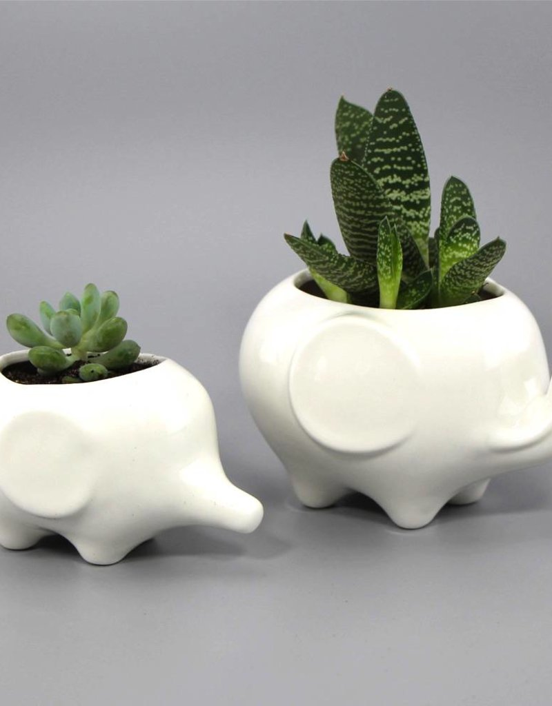 "Flower pot set ""Elefanten"""