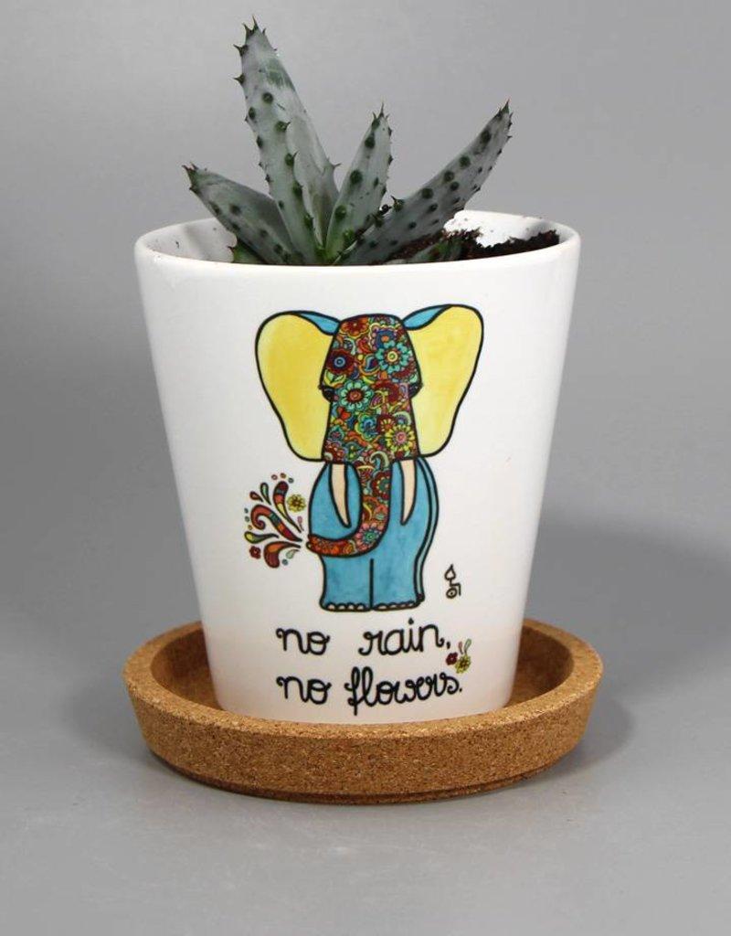 "Flowerpot ""No rain, no Flowers"""