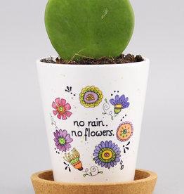"""Blumentopf """"No Rain 20"""""""