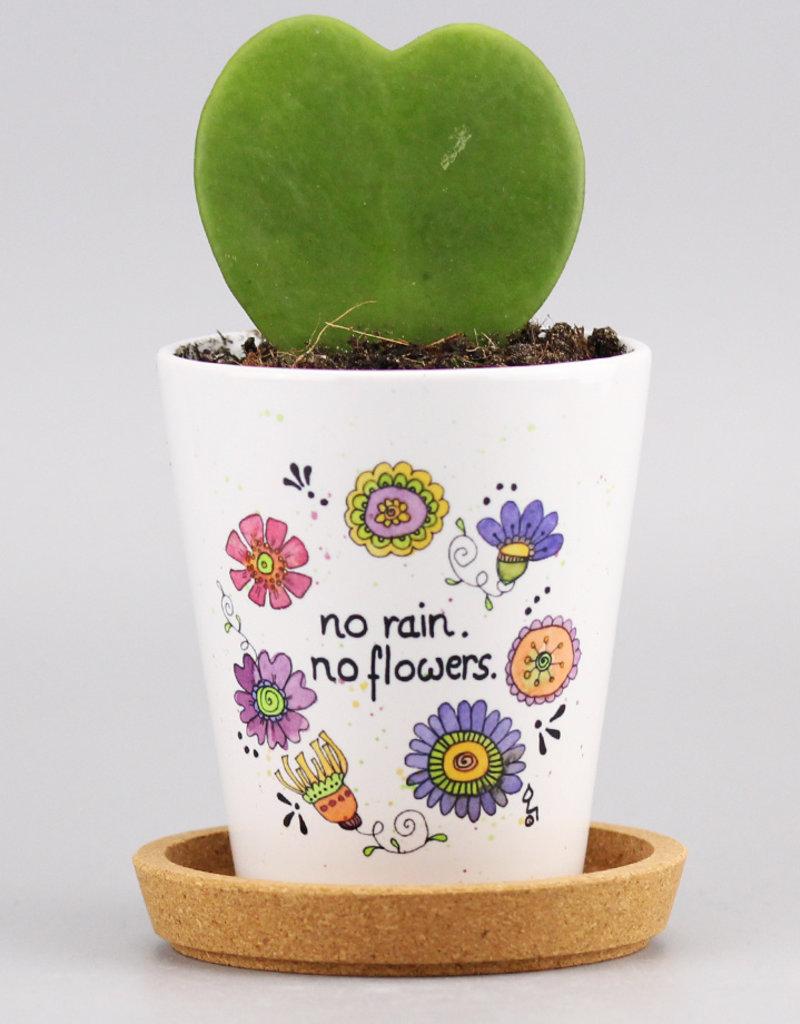 """Flowerpot """"No Rain 20"""""""