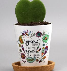 "Blumentopf ""Grow"""