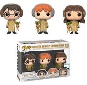 Funko Harry Potter, Ron Weasley, Hermione Granger Herbology 3-Pack - Box Damage - Funko POP!