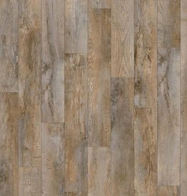 Moduleo Moduleo Select   Country Oak 24958