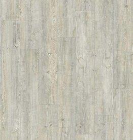 Moduleo Moduleo Transform Latin Pine 24242 click
