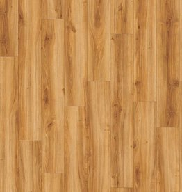Moduleo Moduleo Transform  Classic Oak 24438