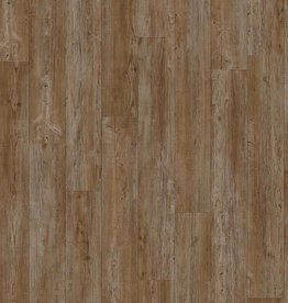 Moduleo Moduleo Transform Latin Pine 24852