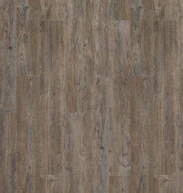 Moduleo Moduleo Transform Latin Pine 24868