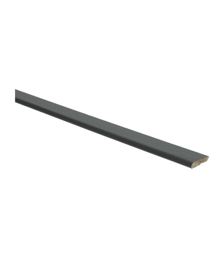 Zwart RAL 9005 plakplint