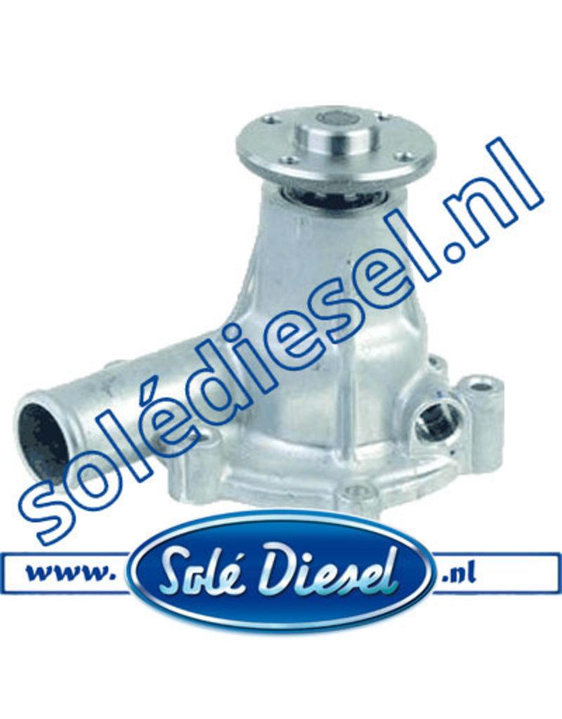13821020 Solé Wasserpumpe