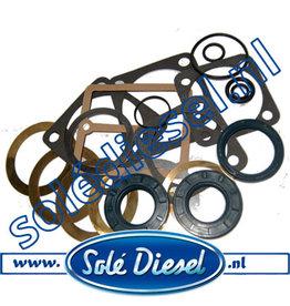 25413501  Solédiesel  Teilenummer   Gasket & seal kit SMI