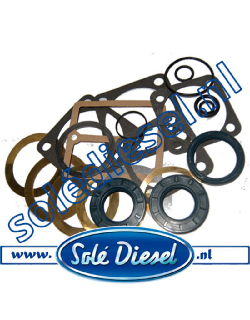 25413501| Solédiesel |Teilenummer | Gasket & seal kit SMI