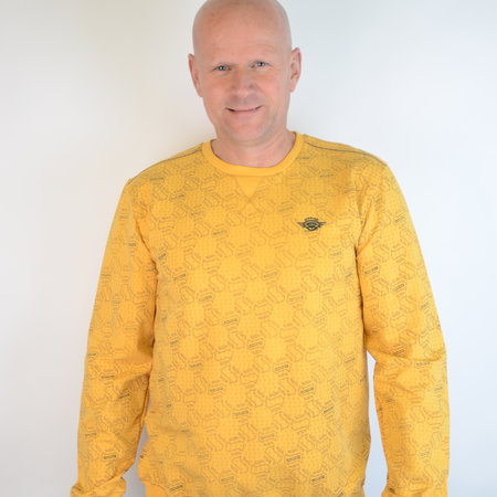 Gabbiano Sweater Yellow 77106