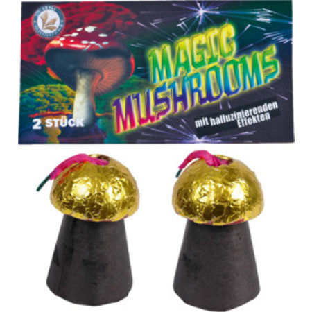 Lesli Silvesterzauber Magic-Mushrooms