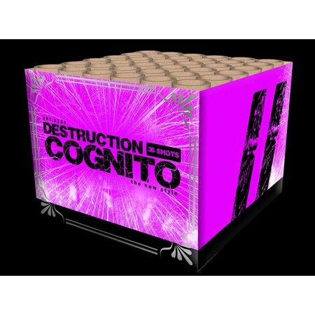 Katan Vuurwerk Destruction Cognito