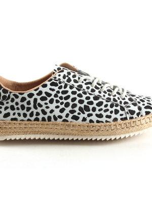 Dwars DWRS - Marrakesh schoen cheetah