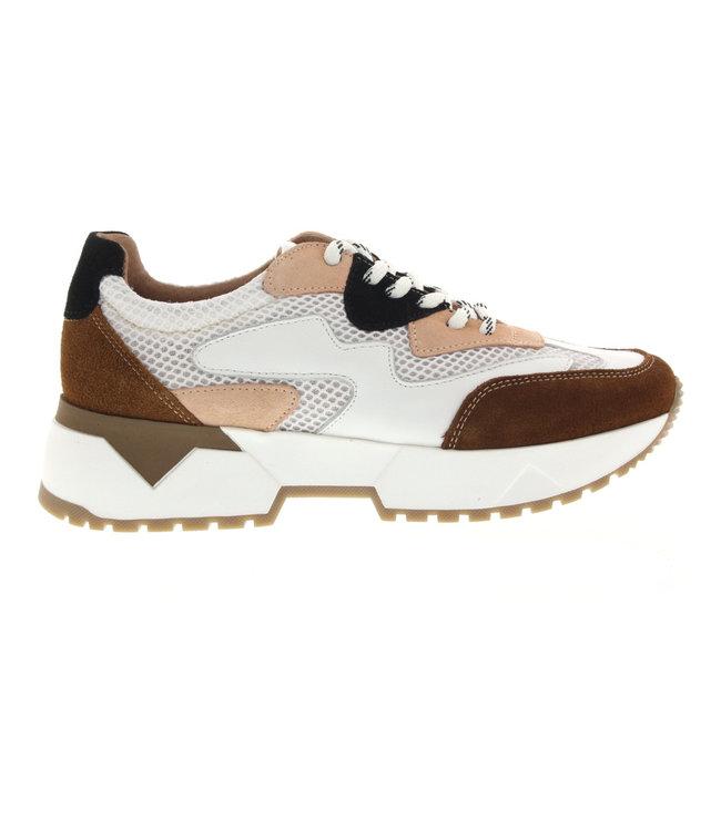 DWRS - Brisbane sneakers