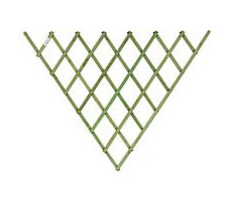 Fan Trellis Sage green 0.7 x 1.4 m