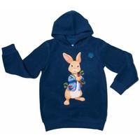 Peter Rabbit Hoodie: Pieter Konijn