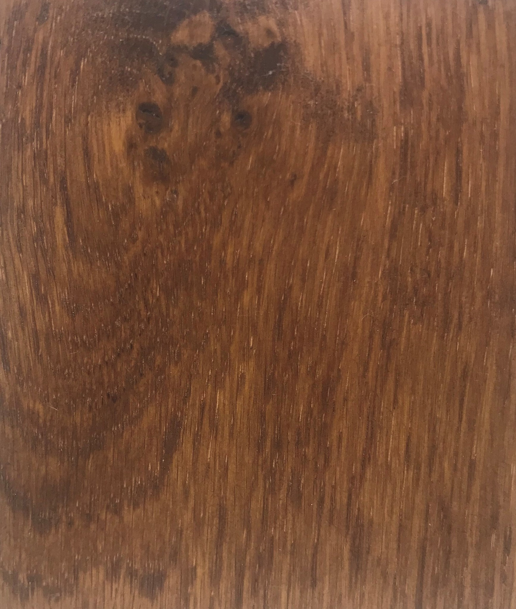 VER0014 Morning Wood