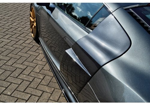 OEM LINE® V10 Look Side Blades voor Audi R8 42 (2006-2015)