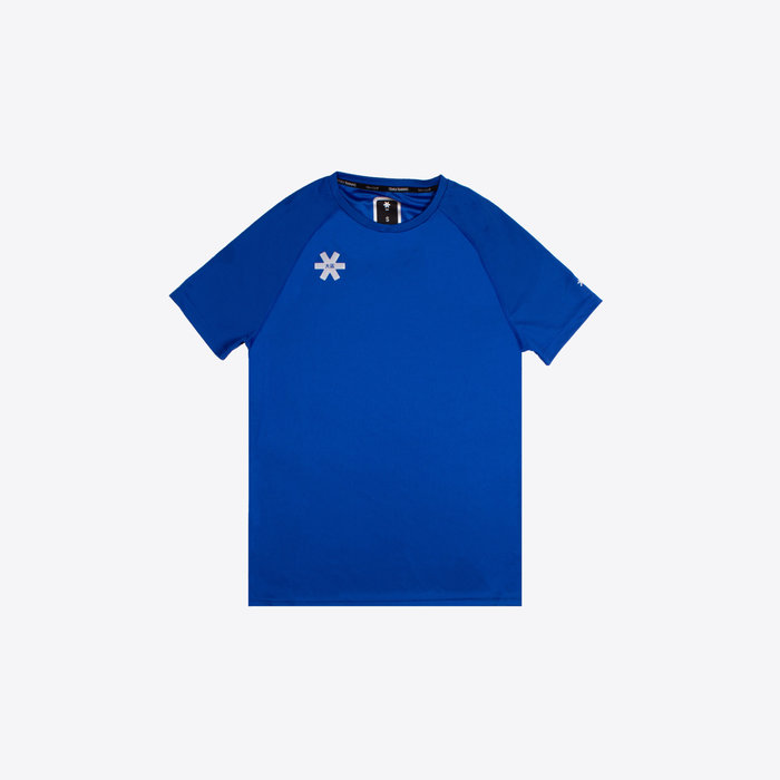DESHI TRAINING TEE ROYAL BLUE
