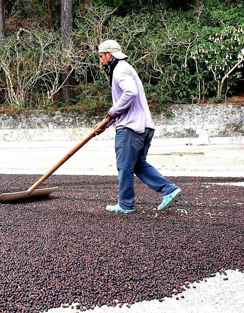 Boot Koffie Bootkoffie Brazil Santos